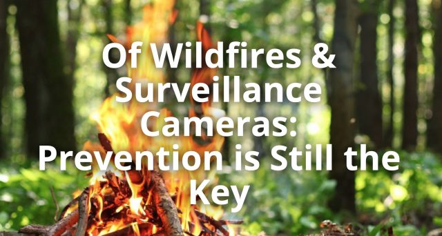 Of Wildfires & Surveillance Cameras: Prevention is Still the Key - The Lockbox